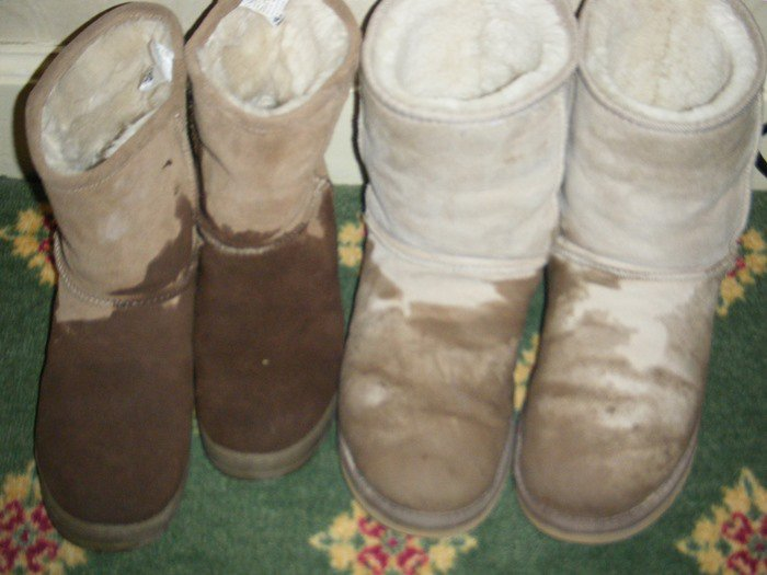 Wet Ugg boots with potential water damage