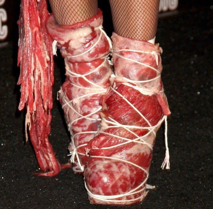 Lady Gaga wearing her infamous meat shoes