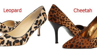 3d81c024bf17d Cheetah vs. Leopard Print Shoes  What s the Difference