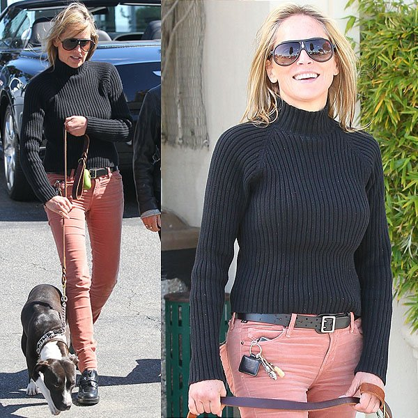 Sharon Stone walking her pit bull pup before heading out to lunch at Clafoutis