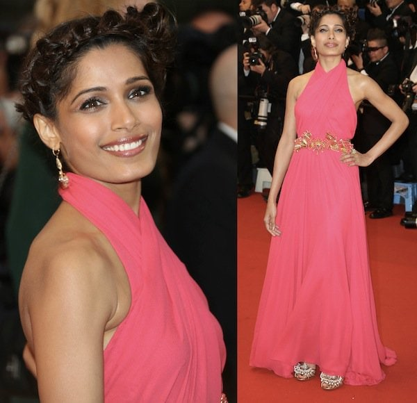 Freida Pinto in Gucci for the 66th Annual Cannes Film Festival Opening Ceremony on May 15, 2013