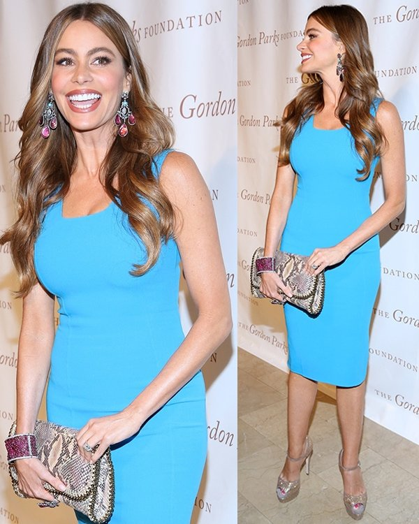 Sofia Vergara at the 2013 Gordon Parks Foundation Awards at The Plaza Hotel in New York City on June 4, 2013