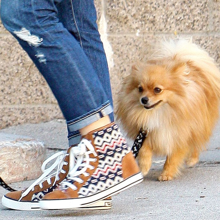 Gwen Stefani's fair-isle-printed fashion sneakers and her Pomeranian puppy