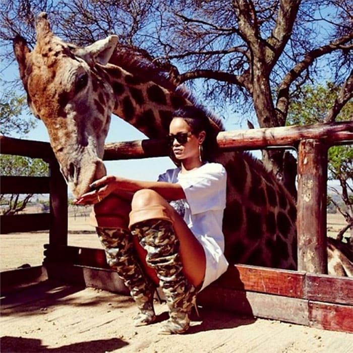 Rihanna feeding a giraffe in South-Africa