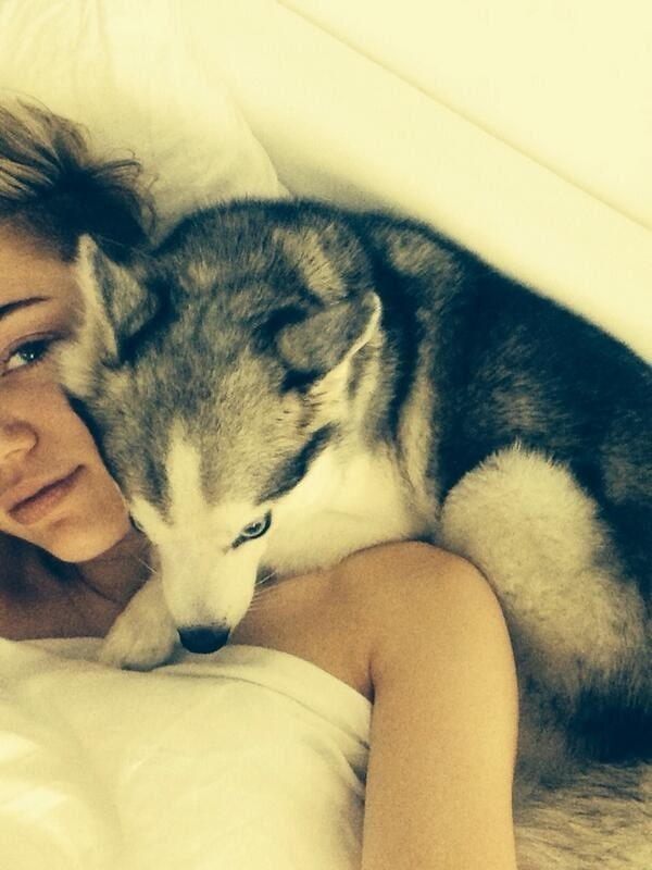 """Miley Cyrus' post-21st birthday Twitter pic with the caption """"My best friend (sorry to blow y'all up with puppy pics)"""""""