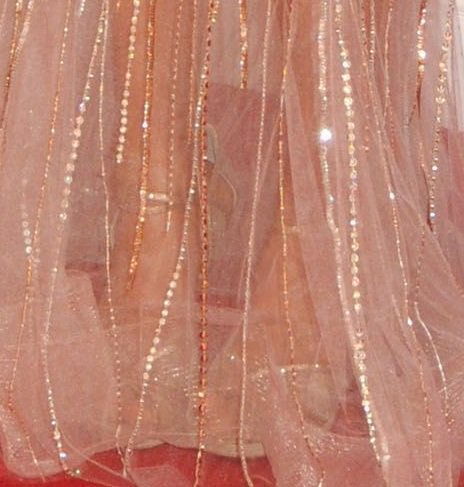 Carrie Underwood's Jimmy Choo heels barely show through her sheer Ralph & Russo gown at the CMAs