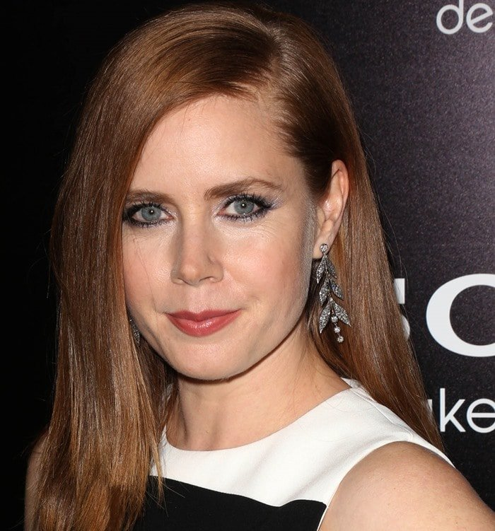 """Amy Adams wears her hair down at the premiere of """"American Hustle"""""""