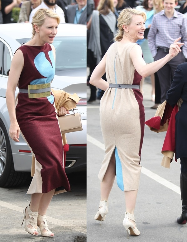 Cate Blanchett ina fashion-forward dress from Roksanda Ilincic's Fall 2014 collection featuring a gold metallic belt and color-block panels of burgundy and sand