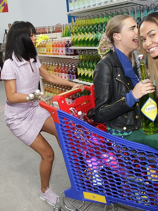 Rihanna shopping cart