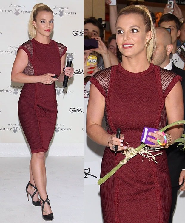 Britney Spears wore a figure-hugging knee-length burgundy dress with mesh panels by Tadashi Shoji