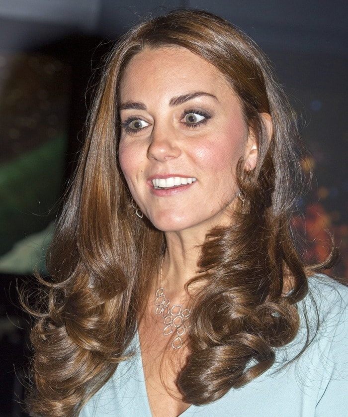 Catherine, Duchess of Cambridge (aka Kate Middleton), accessorized with Monica Vinader earrings
