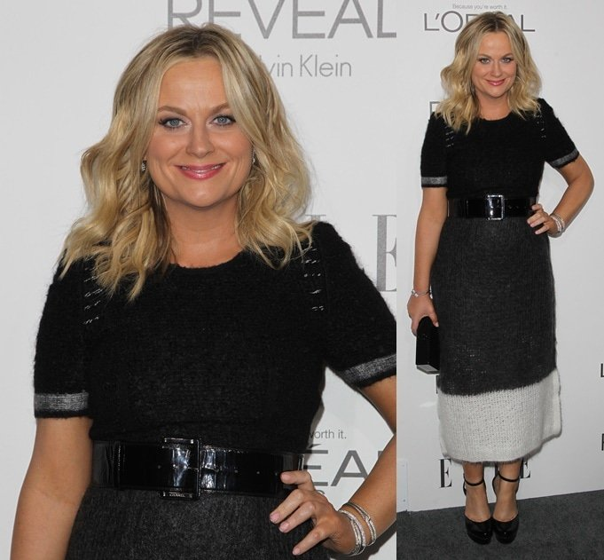 Amy Poehler at the 2014 ELLE Women In Hollywood Awards