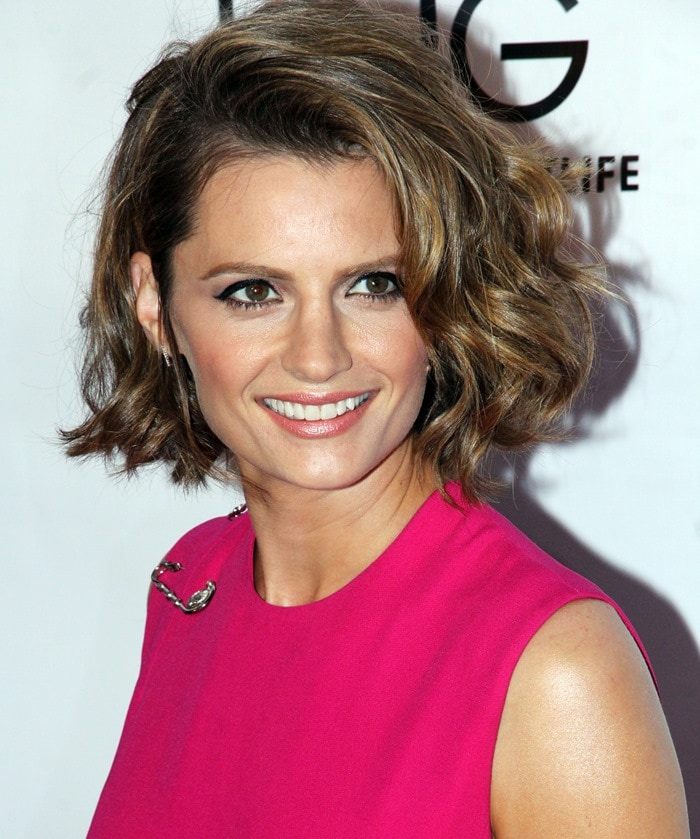 Stana Katic at the 'CBGB' West Coast premiere held at ArcLight Cinemas in Hollywood on October 1, 2013
