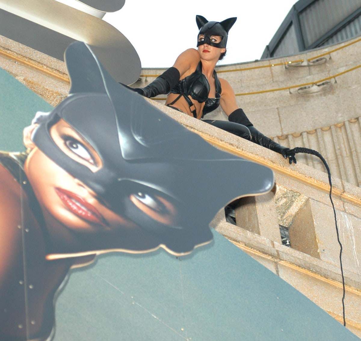 Released theatrically on July 23, 2004, by Warner Bros. Pictures, Catwoman is loosely based on the DC Comics character Catwoman