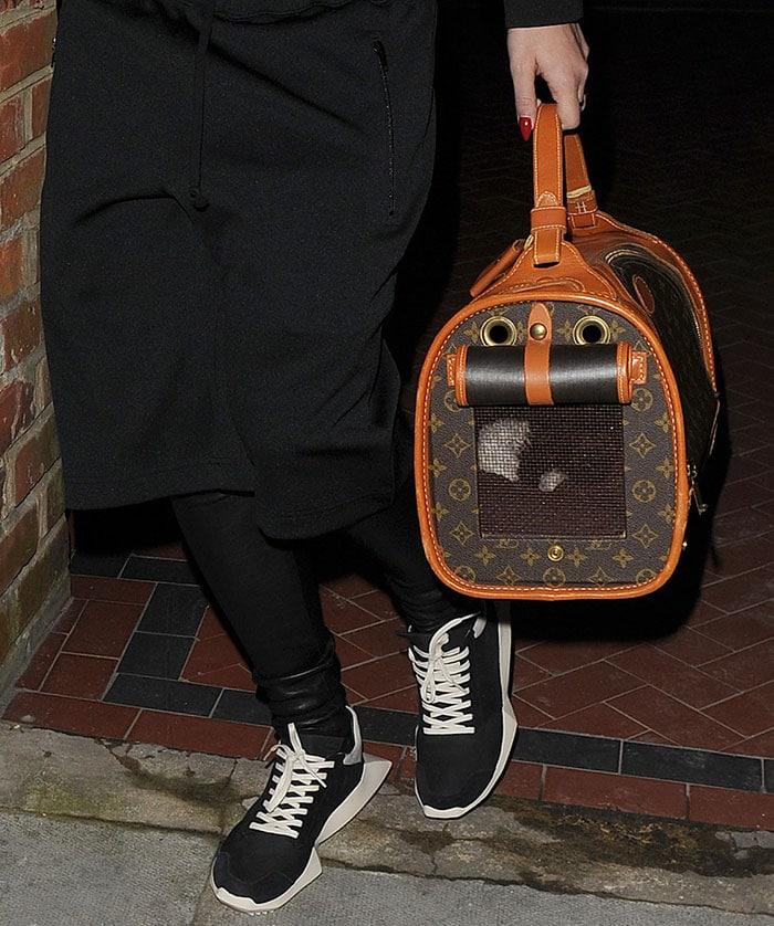 Rita-Ora-carries-Louis-Vuitton-Dog-Carrier
