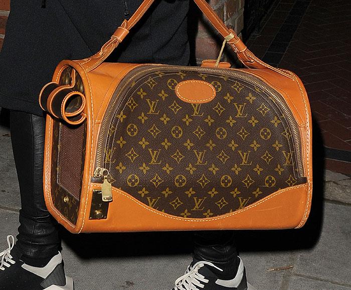 Rita-Ora-carries-her-dog-in-Louis-Vuitton-bag
