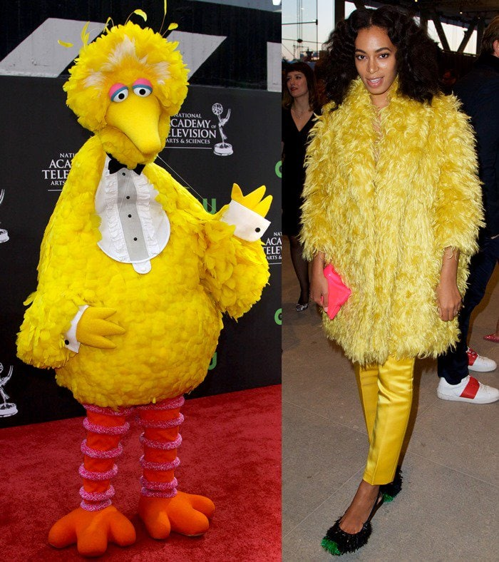 Big Bird of Sesame Street attends the 36th Annual Daytime Emmy Awards at The Orpheum Theatre in Los Angeles on August 30, 2009 / Solange Knowles at the opening night party of The Whitney Museum of American Art in New York City on April 24, 2015