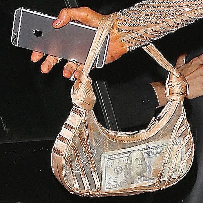 Paris Hilton sheer handbag