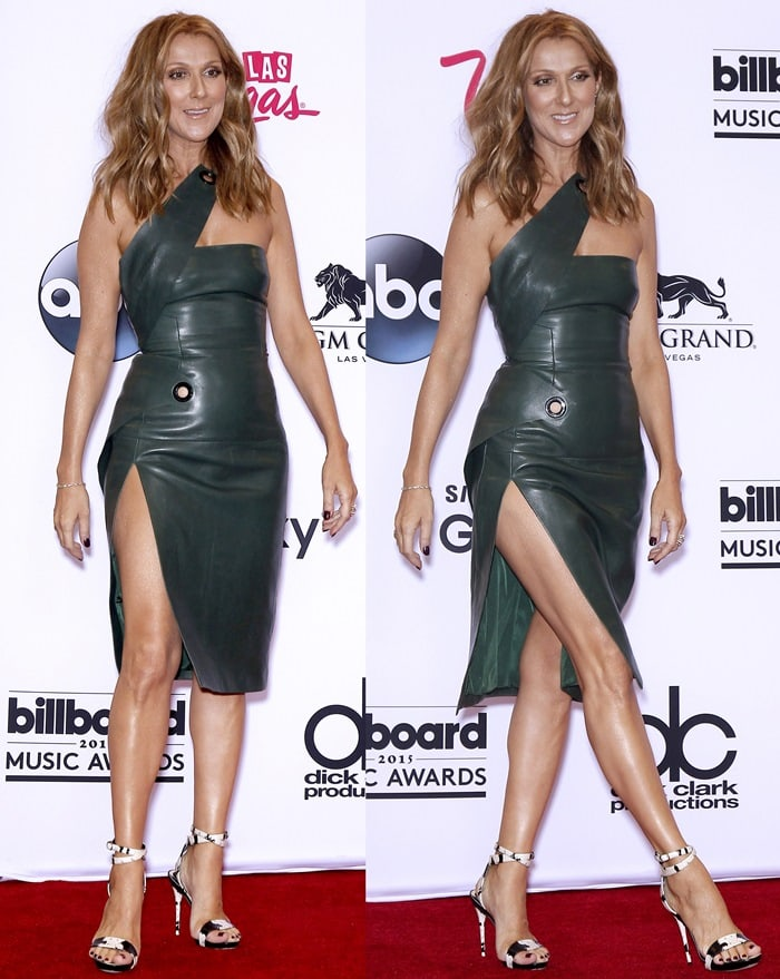 Celine Dion flashed her legs in a sexy jade green one-shoulder leather dress