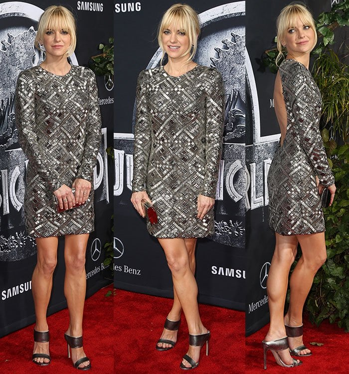 Anna Faris finished off her look with a silver clutch and a silver pair of heels to match her dress