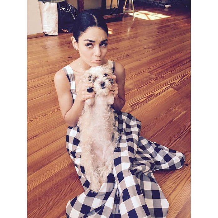 Vanessa poses for a photo with her pup while wearing her Dolce & Gabbana gingham dress