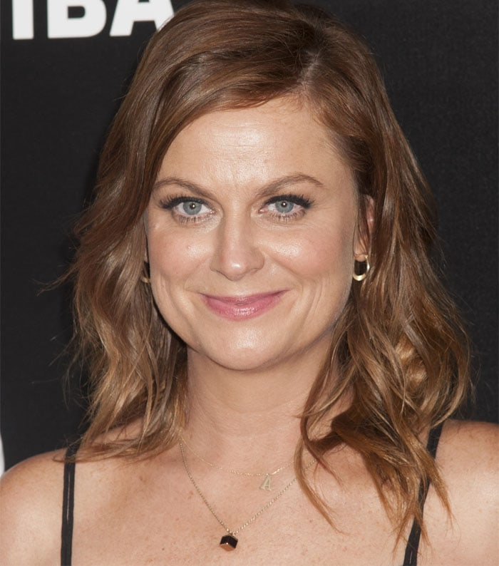 Amy Poehler at the New York premiere of Difficult People