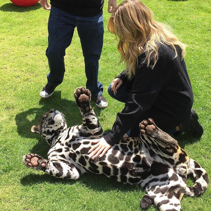 Khloe Kardashian plays with a jaguar at the Black Jaguar White Tiger Foundation in Mexico