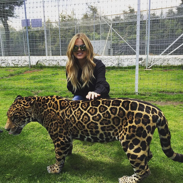 Khloe Kardashian pets a big cat at an animal sanctuary in Mexico
