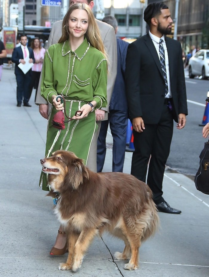 Amanda Seyfried brings her rescue dog Finn with her as she arrives at her interview on The Late Show with Stephen Colbert