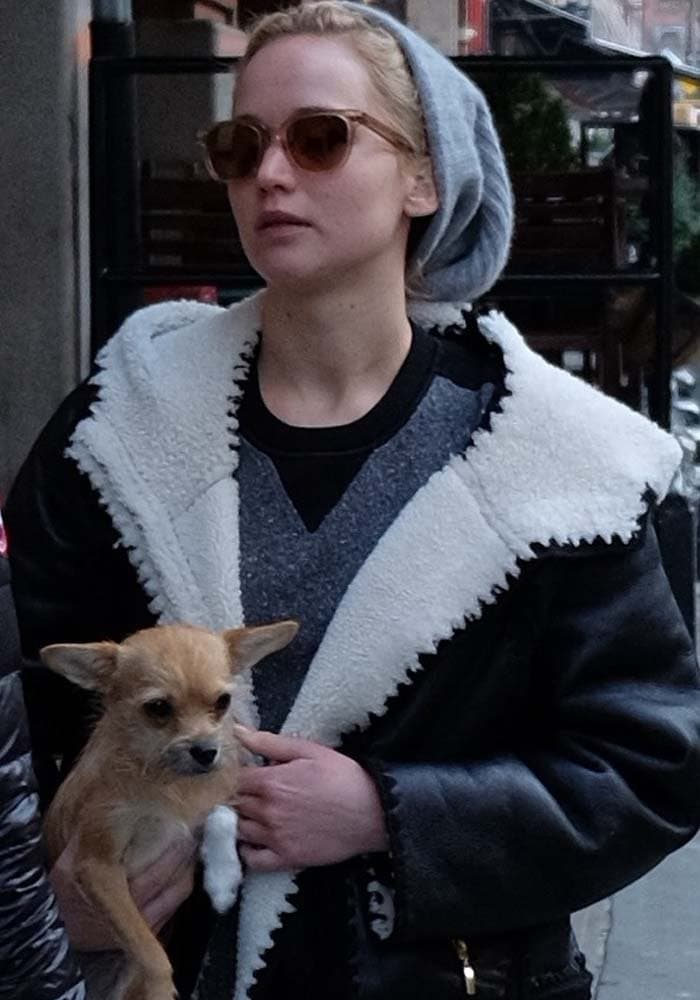 Jennifer Lawrence Dog Manhattan Rag Bone 1