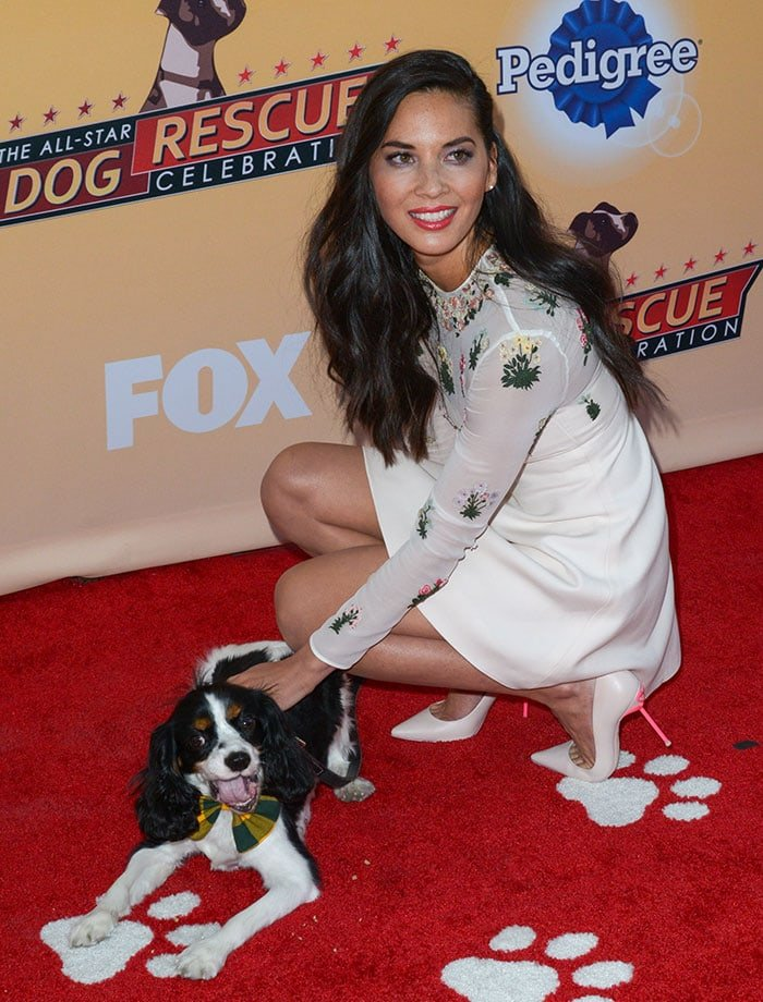 Olivia Munn poses with her pet Cocker Spaniel Chance on the red carpet