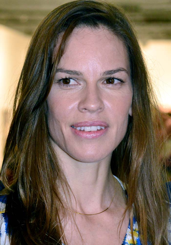 Hilary Swank broke up with her long-timeboyfriend Laurent Fleury earlier this year