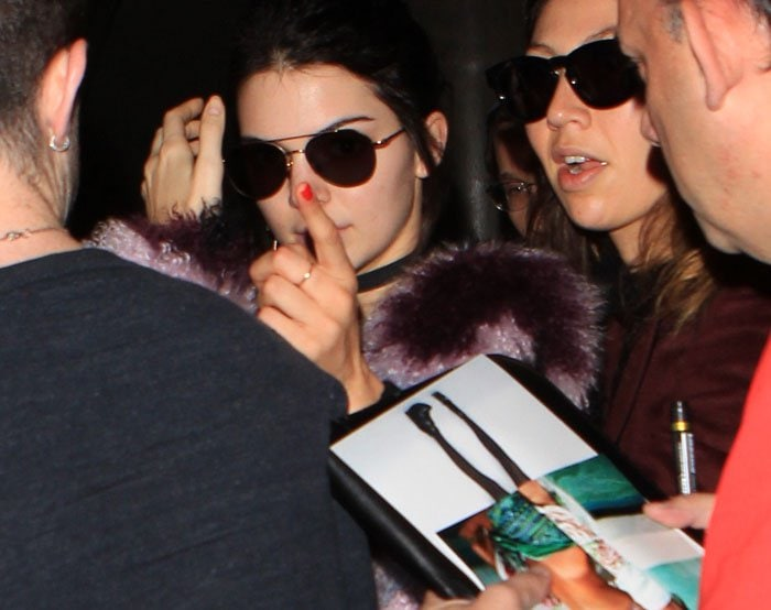 Kendall Jenner wears sunglasses and a luxe Elizabeth and James jacket in plush, multicolored fur
