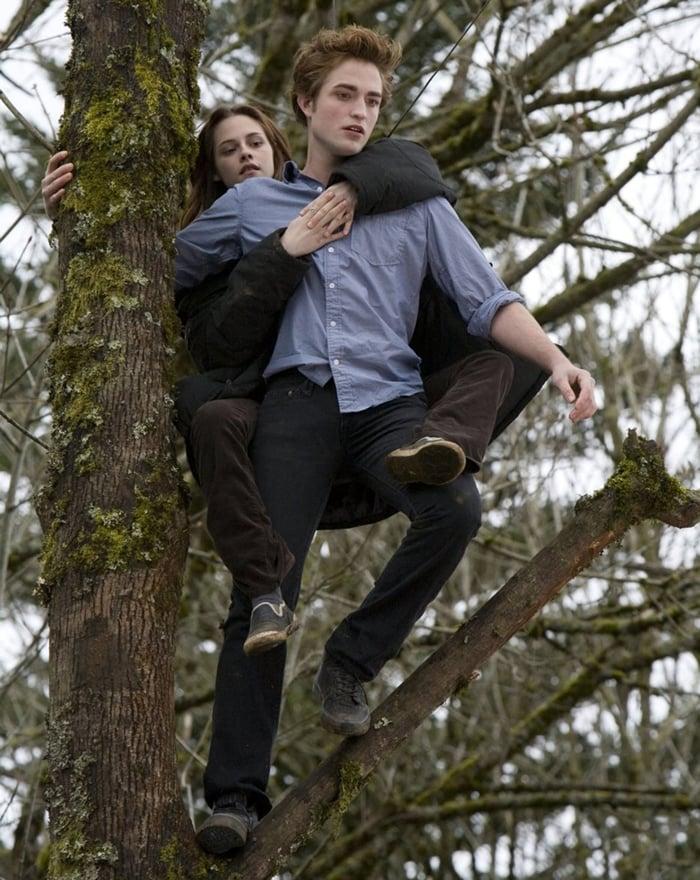 Kristen Stewart and Robert Pattinson in the 2008 American romantic fantasy film Twilight