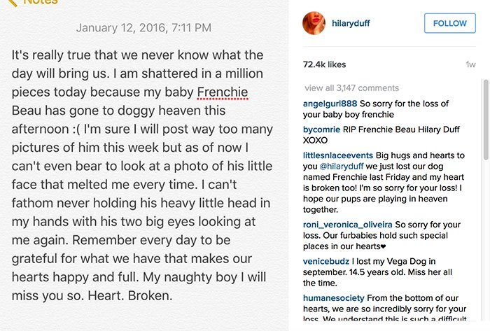 Hilary Duff expressed her heartbreak on Instagram over the passing of her French bulldog, Beau