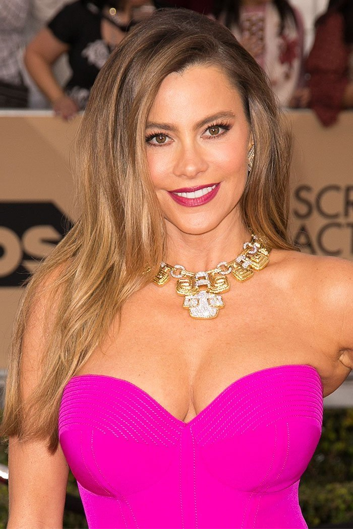 Sofia Vergara wears her hair down on the red carpet of the 2016 Screen Actors Guild Awards