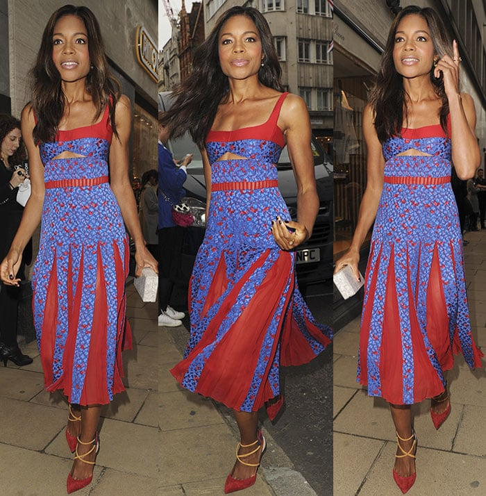 Naomie Harris allowed her dress and pumps to take center stage