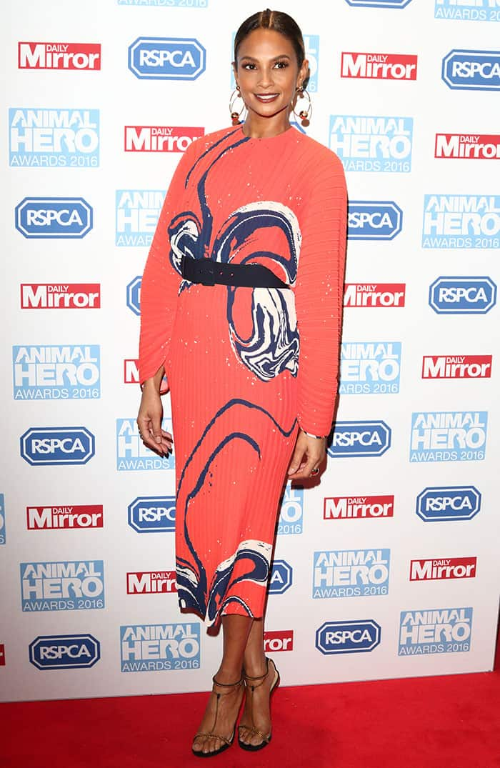 Alesha Dixon wore gorgeous makeup with dark mascara and reddish-brown lipstick