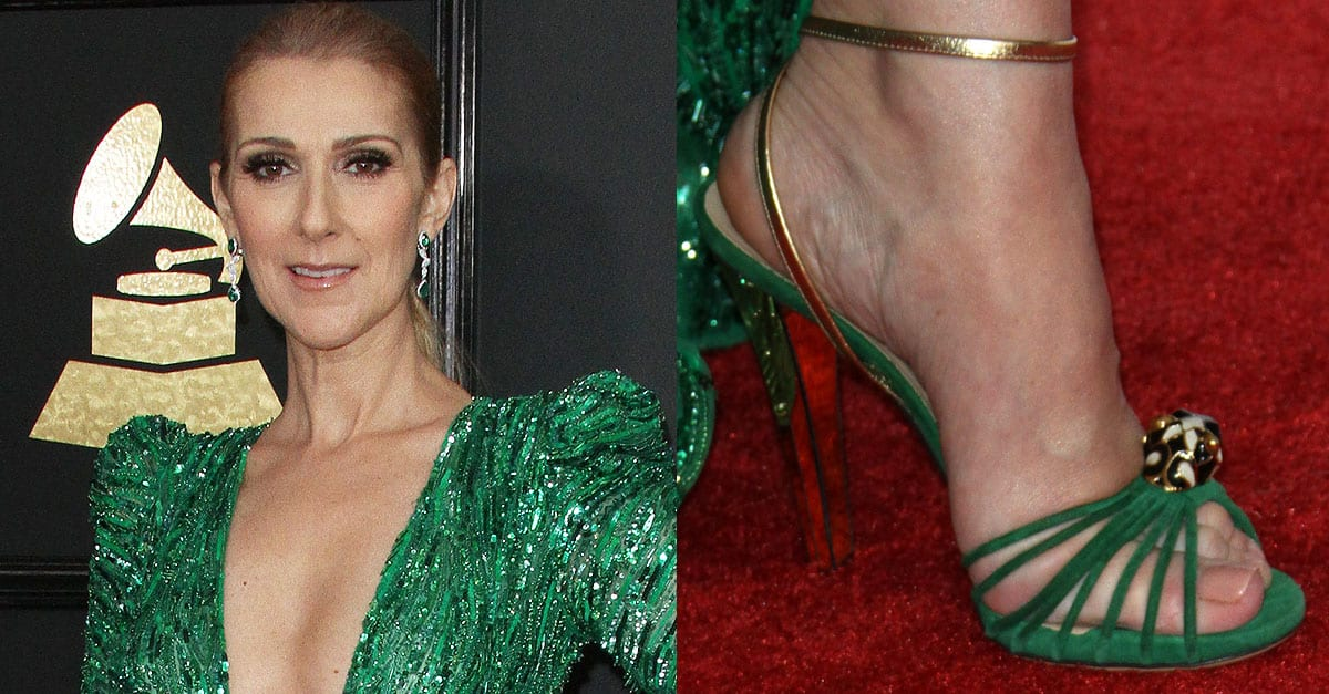 Celine Dion Returns To Grammys In Zuhair Murad Dress And
