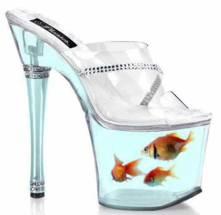 High Heels Platform Aquarium Shoes