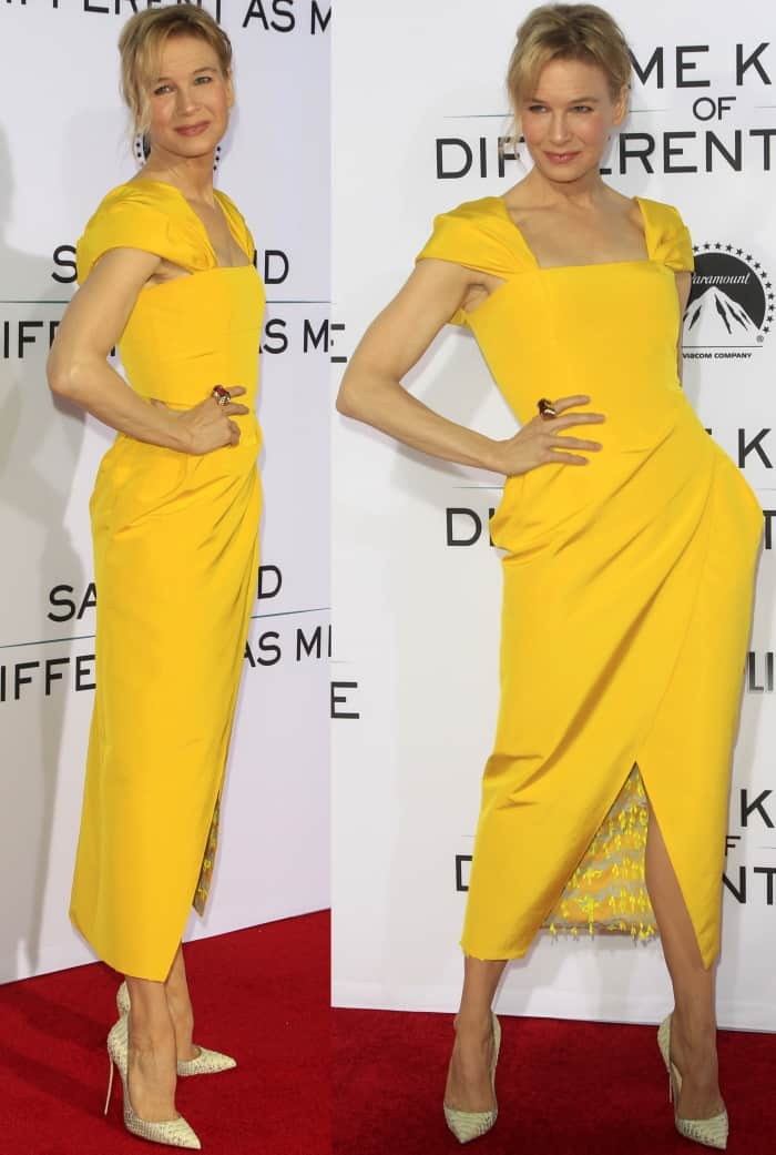 "Renee Zellweger wearing a Carolina Herrera Spring 2018 dress and Christian Louboutin ""So Kate"" pumps at the ""Same Kind of Different As Me"" premiere"