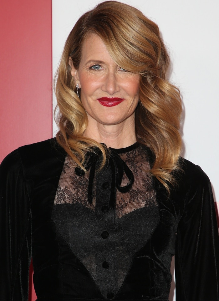 "Laura Dern wearing a Vassilis Zoulias Fall 2017 dress at the ""Downsizing"" special screening in Los Angeles"