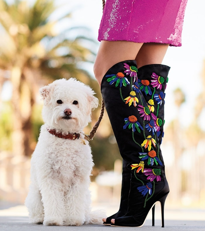 How do you feel about this black knee-high satin boot with floral embroidery from Giuseppe Zanotti?