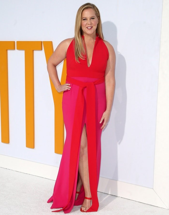 Amy Schumer in a two-toned pink Brandon Maxwell dress with plunging neckline and belt