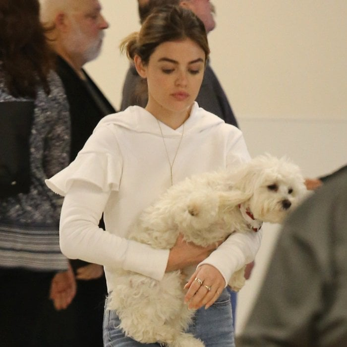 Lucy Hale carrying her adorable two-year-old maltipoo Elvis at LAX on April 2, 2018
