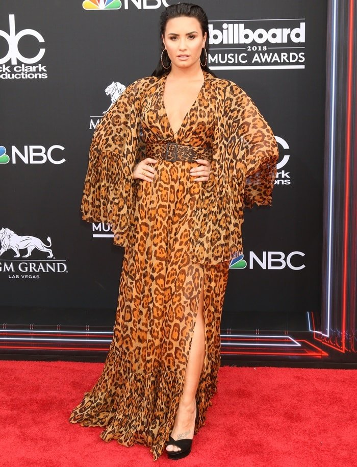 Demi Lovato in a cheetah printed floor length dress from Christian Dior's Resort 2009 collection