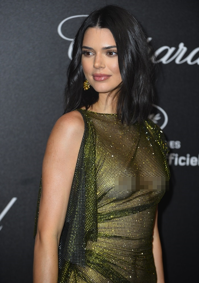 Kendall Jenner left nothing to the imaginationin a naked dress