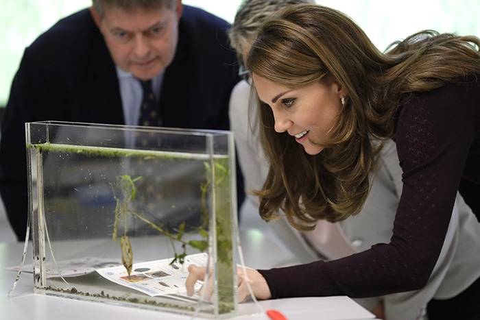 Kate Middleton looking at some of the scientific center's insect and plant species