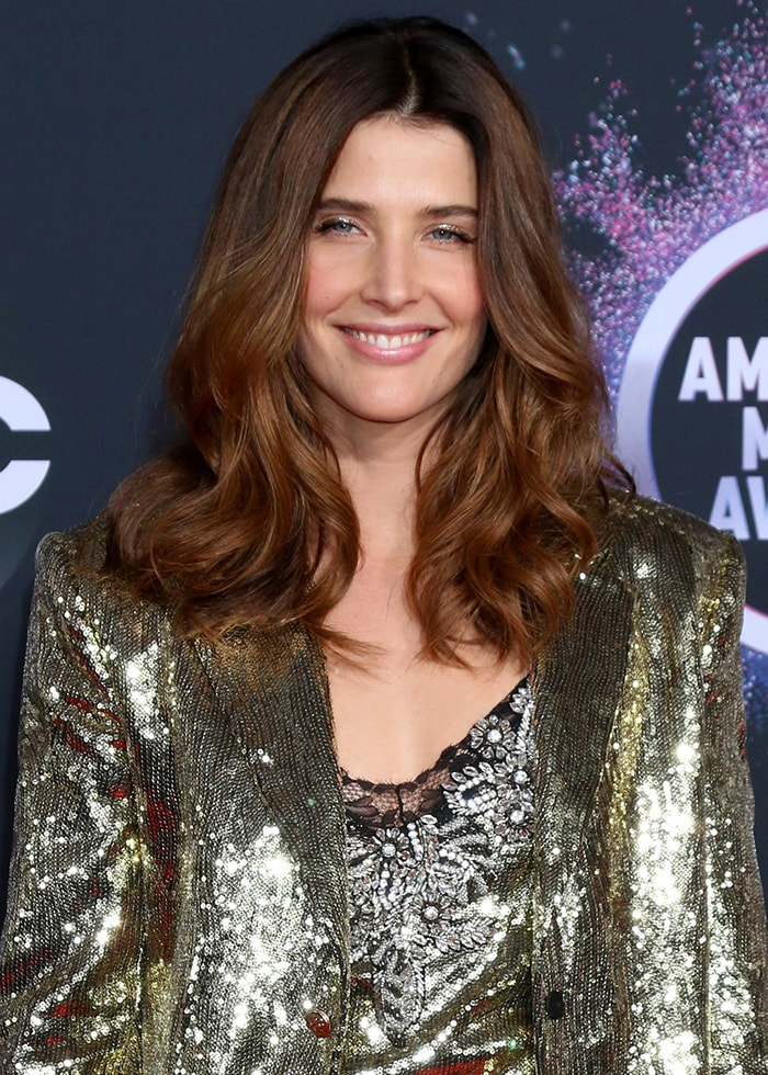 Cobie Smulders wears soft waves hairstyle with shimmery eyeshadow