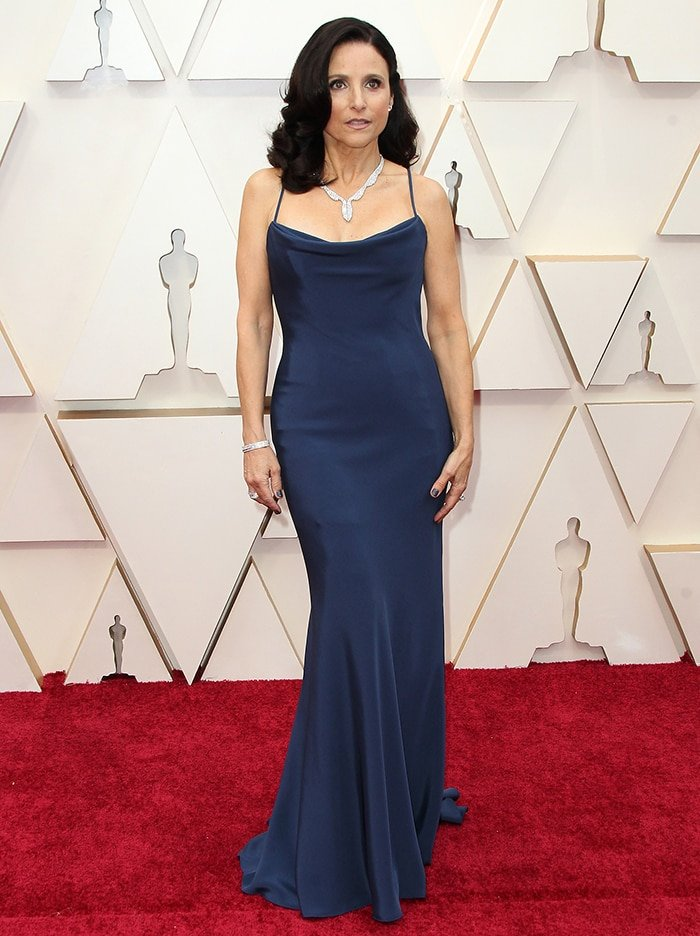 Julia Louis-Dreyfus stuns in Vera Wang at the 2020 Oscar Awards on February 9, 2020